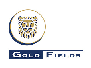 client_logo_goldfields